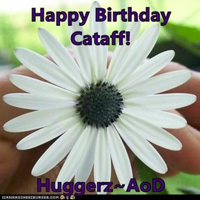 Happy Birthday Cataff!  Huggerz~AoD