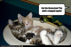 Get the Drano,hon! The sink's clogged again!