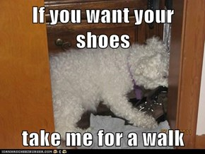 If you want your shoes  take me for a walk