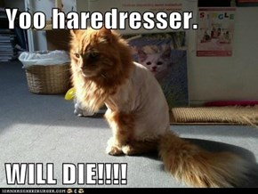 Yoo haredresser.  WILL DIE!!!!