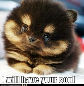 I will have your soul