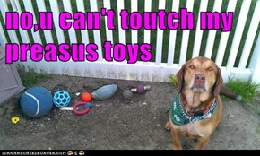 no,u can't toutch my preasus toys