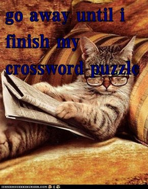 go away until i finish my crossword puzzle