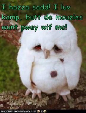 I hazza sadd! I luv kamp, butt de mouzies wunt pway wif me!