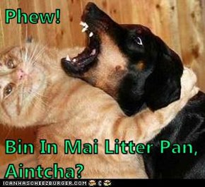 Phew!  Bin In Mai Litter Pan, Aintcha?