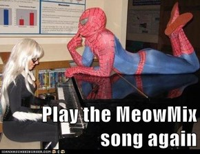 Play the MeowMix song again