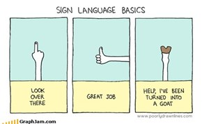 Sign Language Basics