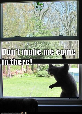 Don't make me come in there!