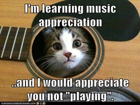 "I'm learning music appreciation  ..and I would appreciate you not ""playing""."