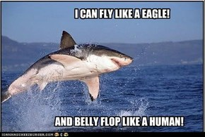I CAN FLY LIKE A EAGLE!