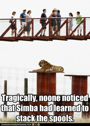 Tragically, noone noticed that Simba had learned to stack the spools.
