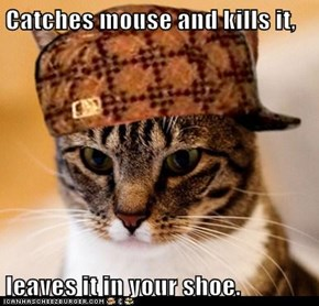 Catches mouse and kills it,  leaves it in your shoe.