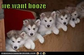 we want booze
