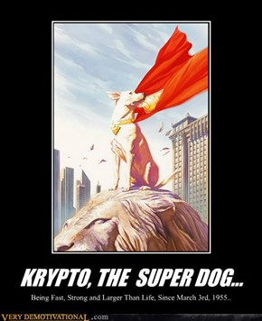 KRYPTO, THE  SUPER DOG...