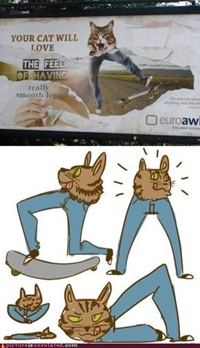 A Cat Can Dream