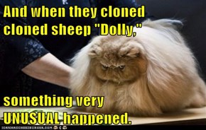 "And when they cloned        cloned sheep ""Dolly,""  something very                 UNUSUAL happened."