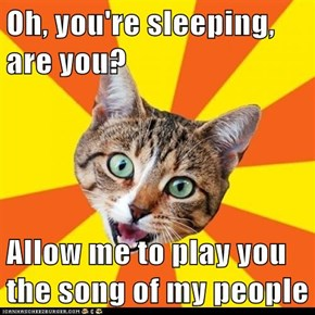Oh, you're sleeping, are you?  Allow me to play you the song of my people
