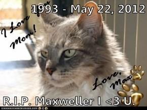 1993 - May 22, 2012  R.I.P. Maxweller I <3 U.
