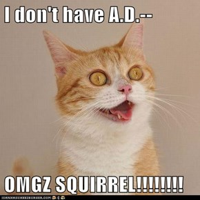 I don't have A.D.--  OMGZ SQUIRREL!!!!!!!!