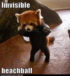 Imvisible  beachball