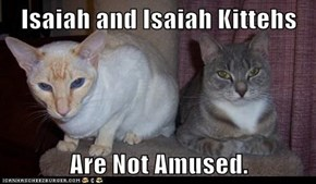 Isaiah and Isaiah Kittehs  Are Not Amused.