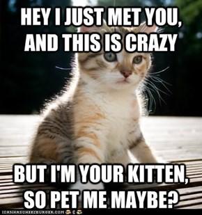 Call Me, Kitty?