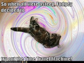 So when all were asleep, Fudgey decided to   try out the Time Travel Machine!