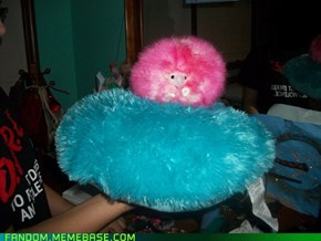 Pigmy Puff