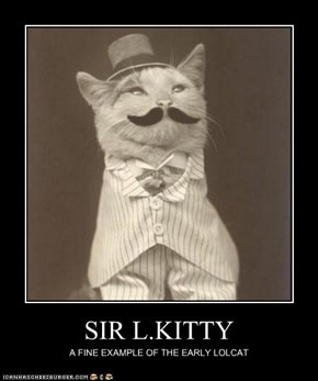 SIR L.KITTY