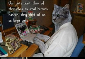 Fun Cat Facts #99