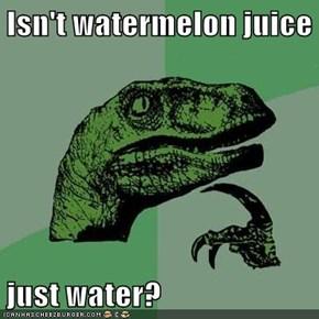 Isn't watermelon juice  just water?