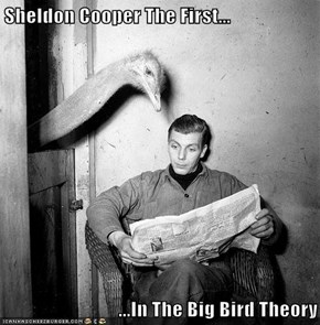 Sheldon Cooper The First...  ...In The Big Bird Theory