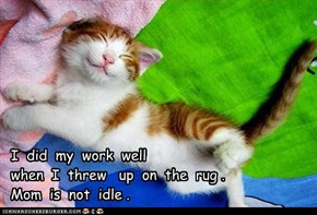 Happy Kitteh Haiku