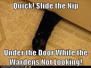 Quick! Slide the Nip  Under the Door While the Wardens Not Looking!