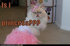 Is i princess???