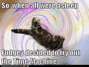 So, when all were asleep  Fudgey decided to try out the Time Machine