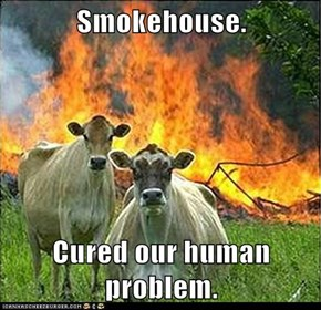 Smokehouse.  Cured our human problem.