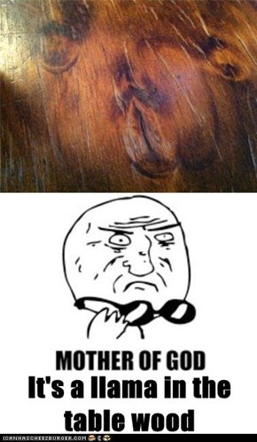 It's a llama in the table wood