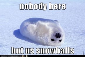 Adorable, Adorable Snowballs