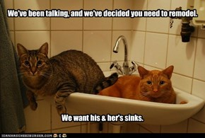 We've been talking, and we've decided you need to remodel.            We want his & her's sinks.