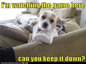 i'm watching the game here  can you keep it down?