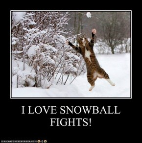 I LOVE SNOWBALL FIGHTS!