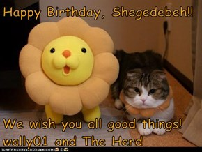 Happy Birthday, Shegedebeh!!   We wish you all good things! wally01 and The Herd