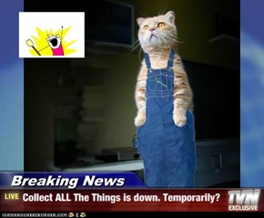 Breaking News - Collect ALL The Things is down. Temporarily?
