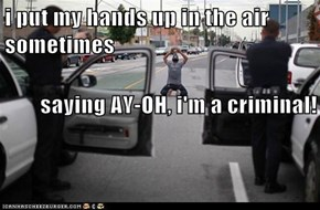 i put my hands up in the air sometimes saying AY-OH, i'm a criminal!