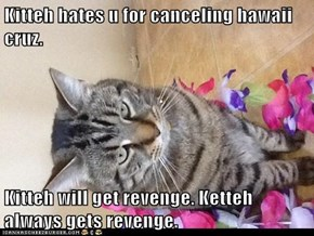 Kitteh hates u for canceling hawaii cruz.  Kitteh will get revenge. Ketteh always gets revenge.