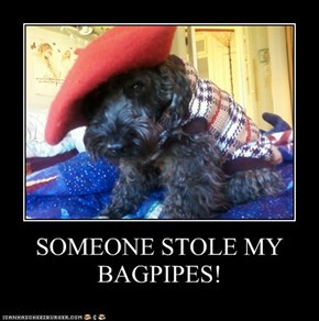 SOMEONE STOLE MY BAGPIPES!