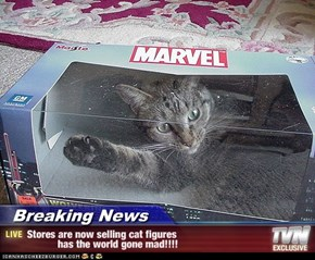 Breaking News - Stores are now selling cat figures            has the world gone mad!!!!