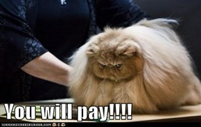 You will pay!!!!