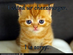 I eated ur cheezburger.  I is sorry.